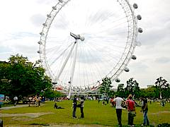 The London Eye, one of the biggest ferris wheels in the world